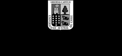 Logo Instituto de Artes Visuales